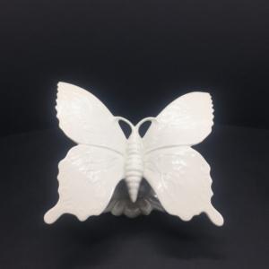 Farfalla caligo capodimonte