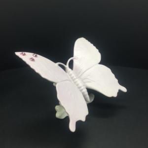 Farfalla Caligo rosa